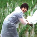 プロ・アクティブスタッフ田植え体験記(2006)